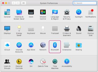 Bluetooth 화면
